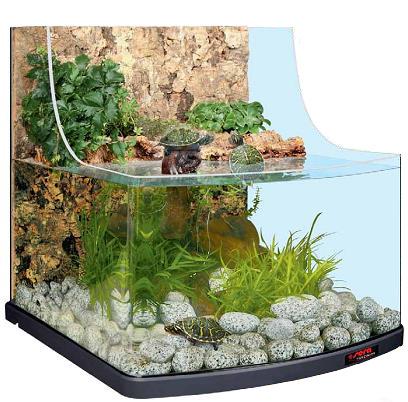 Как сделать аквариум для террариума 10